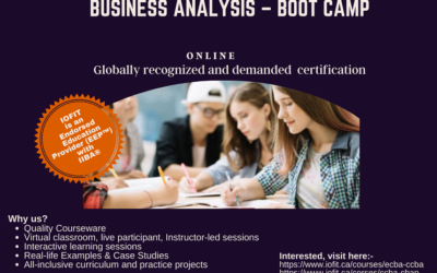 Business Analysis – Boot Camp